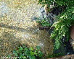 Pépinière Michel - Rivesaltes - Bassin Zen