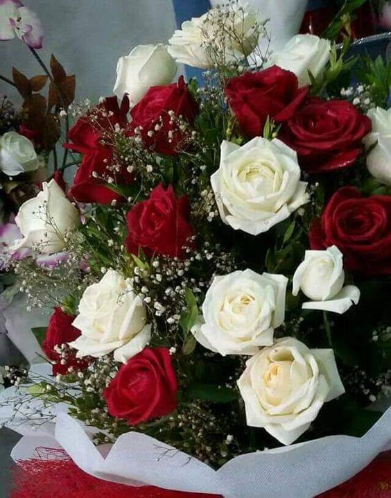 Bonne St Valentin a tous les Amoureux dites le avec des fleurs !